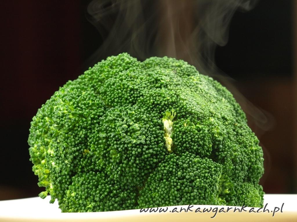 Zapiekanka ryżowa z indykiem i brokułem   Anka w garnkach